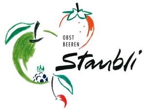 Logo_Staubli
