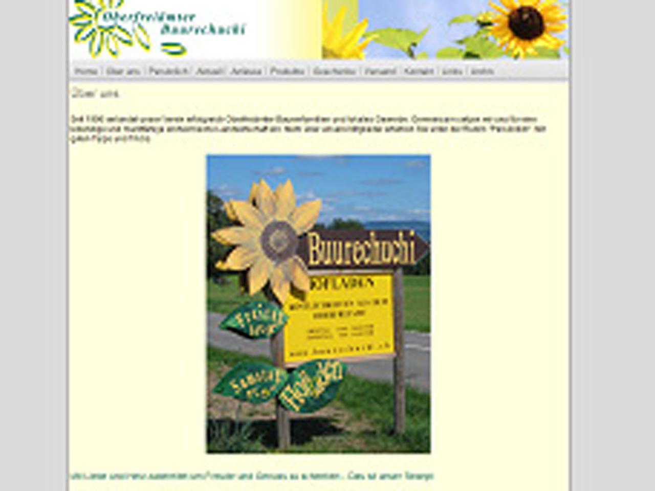2010 – Die Homepage bekommt ein neues Layout.